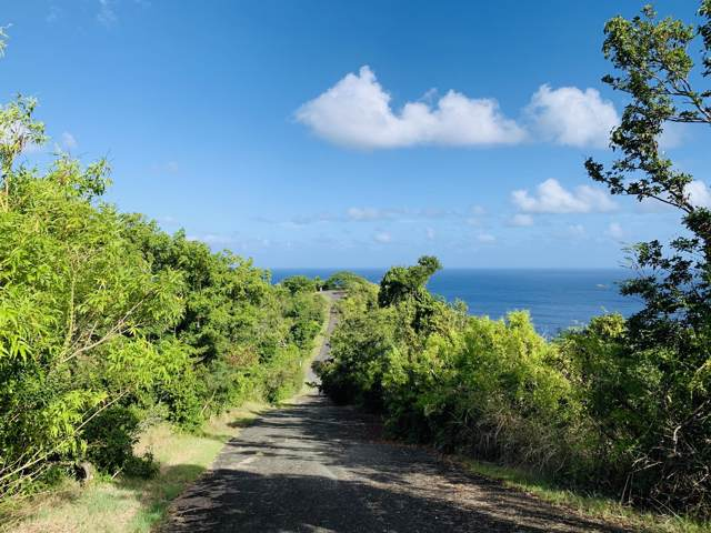 46 Prosperity Nb, St. Croix, VI 00840 (MLS #19-2014) :: Hanley Team | Farchette & Hanley Real Estate
