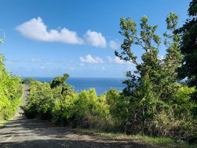 44 Prosperity Nb, St. Croix, VI 00840 (MLS #19-2021) :: Hanley Team | Farchette & Hanley Real Estate
