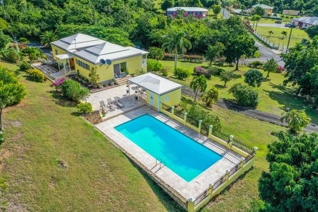 1 Bugby Hole Co, St. Croix, VI 00820 (MLS #19-2025) :: Coldwell Banker Stout Realty