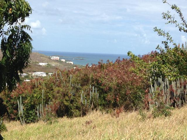 226 Cotton Valley Eb, St. Croix, VI 00820 (MLS #19-21) :: Hanley Team   Farchette & Hanley Real Estate
