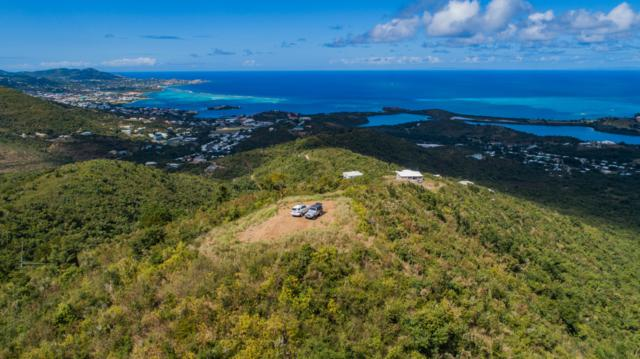 70, 71 Eliza's Retreat Ea, St. Croix, VI 00820 (MLS #19-225) :: Hanley Team | Farchette & Hanley Real Estate