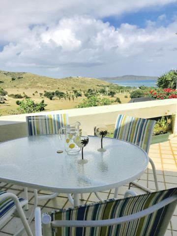 136 Teagues Bay Eb, St. Croix, VI 00820 (MLS #19-242) :: Hanley Team | Farchette & Hanley Real Estate