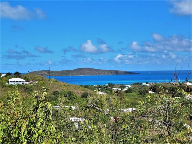 47 Hope & Carton Hill Eb, St. Croix, VI 00820 (MLS #19-253) :: Hanley Team | Farchette & Hanley Real Estate