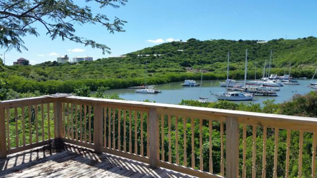 Parcel 24 Water Island Ss, St. Thomas, VI 00802 (MLS #19-256) :: Hanley Team | Farchette & Hanley Real Estate