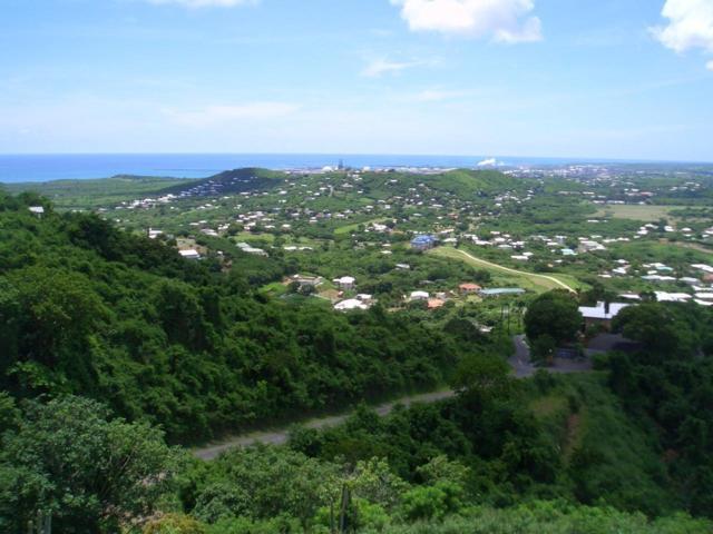 92 Hermon Hill Co, St. Croix, VI 00820 (MLS #19-28) :: Hanley Team | Farchette & Hanley Real Estate