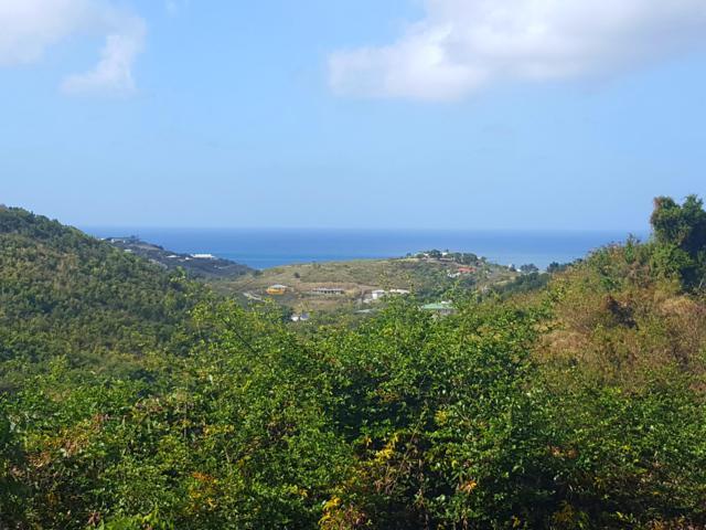 54 Marienhoj Ea, St. Croix, VI  (MLS #19-280) :: Coldwell Banker Stout Realty