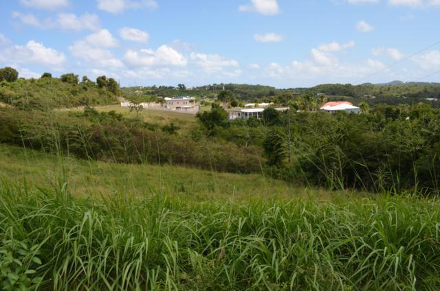 79 Mary's Fancy Qu, St. Croix, VI 00820 (MLS #19-294) :: Hanley Team | Farchette & Hanley Real Estate