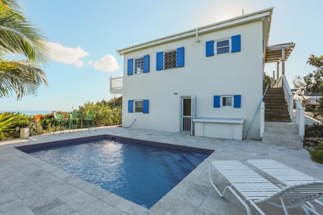 175 & 175A Little La Grange We, St. Croix, VI 00840 (MLS #19-307) :: Hanley Team | Farchette & Hanley Real Estate