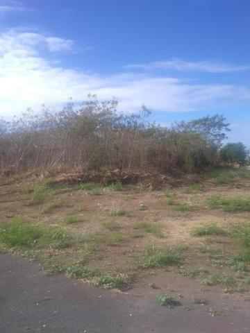Plot 338 Enfield Green Pr, St. Croix, VI 00840 (MLS #19-327) :: Hanley Team | Farchette & Hanley Real Estate