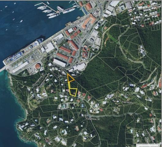 `1-C Havensite Fb, St. Thomas, VI 00802 (MLS #19-339) :: Hanley Team   Farchette & Hanley Real Estate