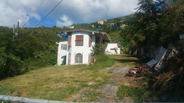 93C-1-A Contant Ss, St. Thomas, VI 00802 (MLS #19-348) :: Hanley Team | Farchette & Hanley Real Estate