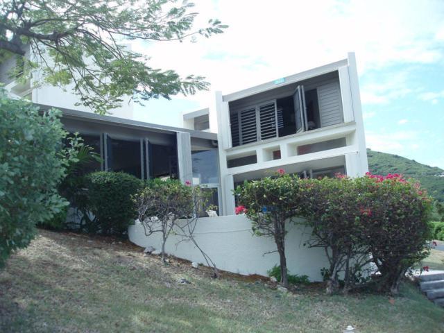 423 Teagues Bay Eb, St. Croix, VI 00820 (MLS #19-35) :: Hanley Team | Farchette & Hanley Real Estate