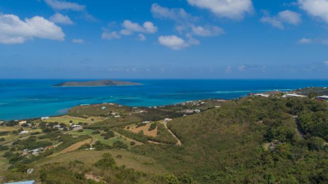 47 & 47 Ga Solitude Eb, St. Croix, VI 00820 (MLS #19-418) :: Hanley Team | Farchette & Hanley Real Estate