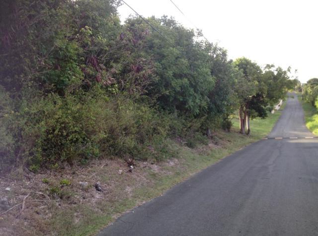 200 Mary's Fancy Qu, St. Croix, VI 00820 (MLS #19-428) :: Hanley Team | Farchette & Hanley Real Estate