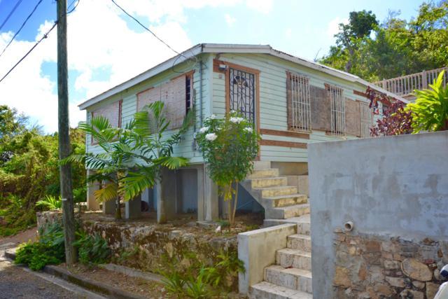 27A,28,29 East Street Ch, St. Croix, VI 00820 (MLS #19-454) :: Hanley Team | Farchette & Hanley Real Estate