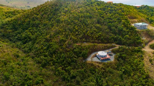 60 Grange Stock Est Co, St. Croix, VI 00820 (MLS #19-464) :: Hanley Team   Farchette & Hanley Real Estate