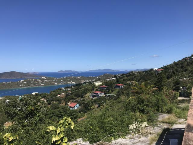 11,11D Hull Lns, St. Thomas, VI 00802 (MLS #19-471) :: Hanley Team | Farchette & Hanley Real Estate