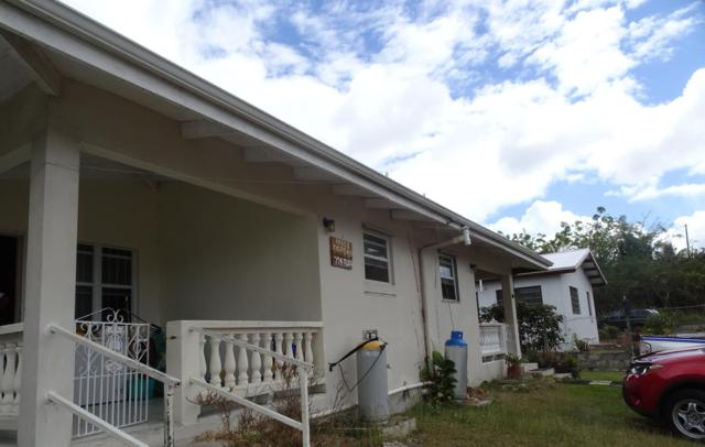 256 Barren Spot Ki, St. Croix, VI 00850 (MLS #19-472) :: Hanley Team | Farchette & Hanley Real Estate