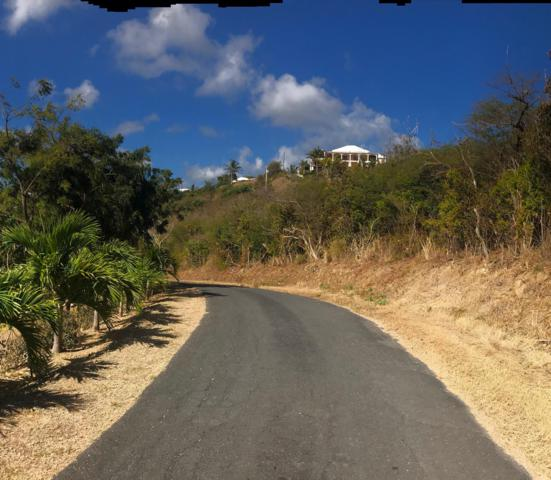 182 Judith's Fancy Qu, St. Croix, VI 00820 (MLS #19-476) :: Hanley Team   Farchette & Hanley Real Estate