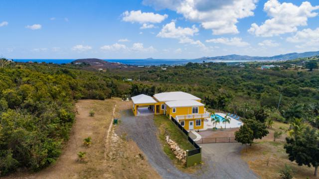 3 & 3H St. John Qu, St. Croix, VI 00820 (MLS #19-480) :: Hanley Team | Farchette & Hanley Real Estate