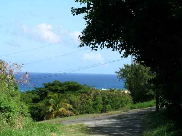 78 Salt River Nb, St. Croix, VI 00820 (MLS #19-500) :: Hanley Team | Farchette & Hanley Real Estate