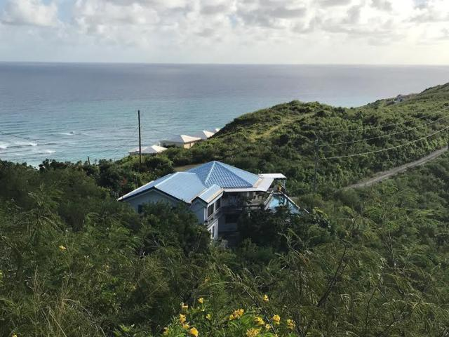 65 North Grapetree Eb, St. Croix, VI 00820 (MLS #19-52) :: Hanley Team | Farchette & Hanley Real Estate