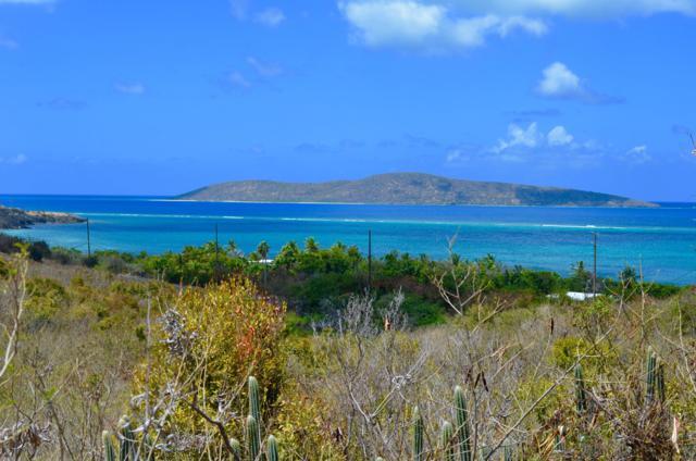 29G North Slob Eb, St. Croix, VI 00820 (MLS #19-527) :: Hanley Team | Farchette & Hanley Real Estate