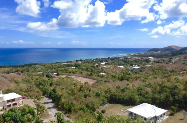 203 La Vallee Nb, St. Croix, VI  (MLS #19-534) :: Hanley Team | Farchette & Hanley Real Estate