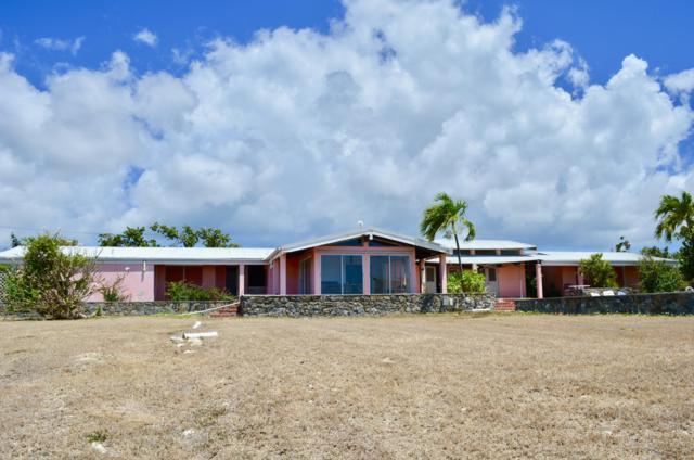 51 Carlton We, St. Croix, VI 00840 (MLS #19-539) :: Hanley Team | Farchette & Hanley Real Estate