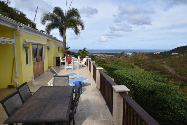 62H La Grange We, St. Croix, VI 00840 (MLS #19-573) :: Hanley Team | Farchette & Hanley Real Estate