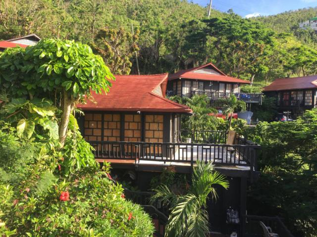 6&6A Contant Ss, St. Thomas, VI 00802 (MLS #19-594) :: Coldwell Banker Stout Realty