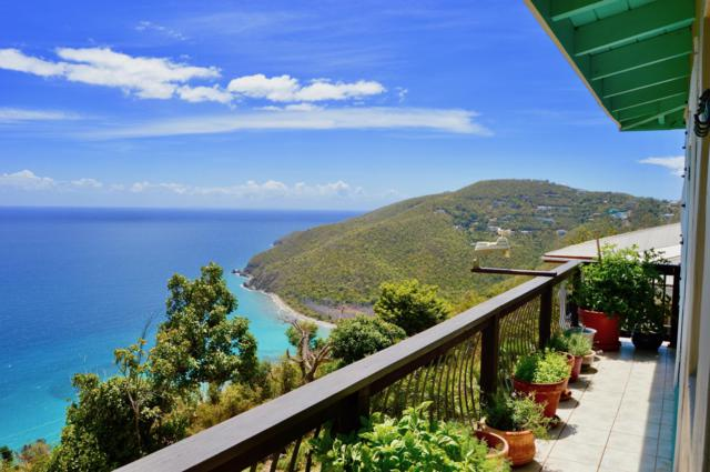 3-7 Bonne Esperance We 1/1, St. Thomas, VI 00802 (MLS #19-608) :: Hanley Team | Farchette & Hanley Real Estate