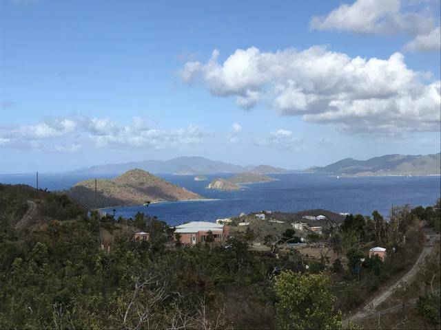14-8 Anna's Retreat New, St. Thomas, VI 00802 (MLS #19-611) :: Hanley Team | Farchette & Hanley Real Estate
