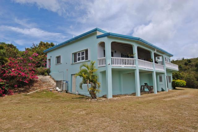 179 Mary's Fancy Qu, St. Croix, VI 00840 (MLS #19-621) :: Coldwell Banker Stout Realty