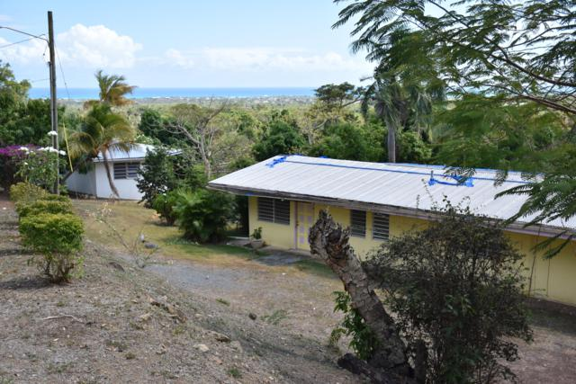 73 St. George Pr, St. Croix, VI 00840 (MLS #19-623) :: Hanley Team | Farchette & Hanley Real Estate