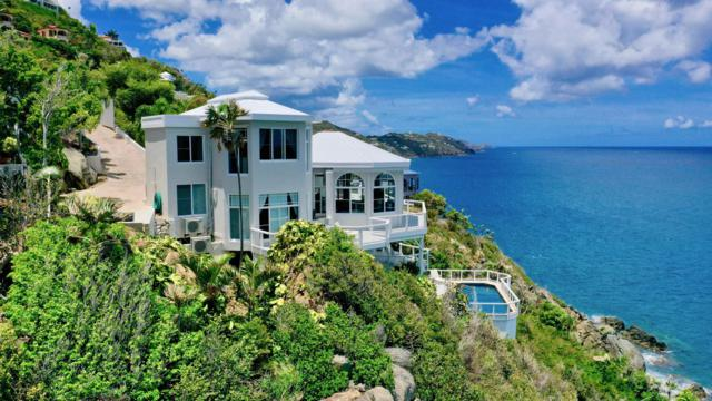 C-44 Lovenlund Gns, St. Thomas, VI 00802 (MLS #19-633) :: Coldwell Banker Stout Realty