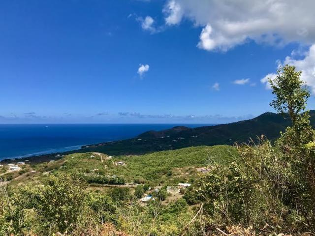 224 Belvedere Nb, St. Croix, VI 00840 (MLS #19-635) :: Hanley Team | Farchette & Hanley Real Estate