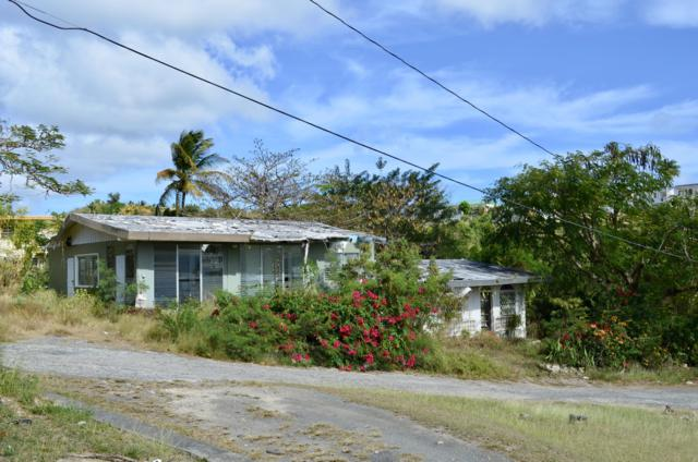 7 Sion Farm Qu, St. Croix, VI 00820 (MLS #19-638) :: Coldwell Banker Stout Realty