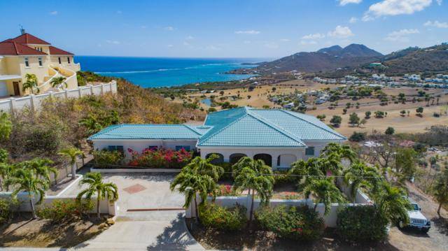 125 Catherine's Hope Eb, St. Croix, VI 00820 (MLS #19-647) :: Coldwell Banker Stout Realty