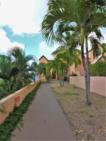 25 Green Cay Ea, St. Croix, VI 00820 (MLS #19-653) :: Hanley Team | Farchette & Hanley Real Estate