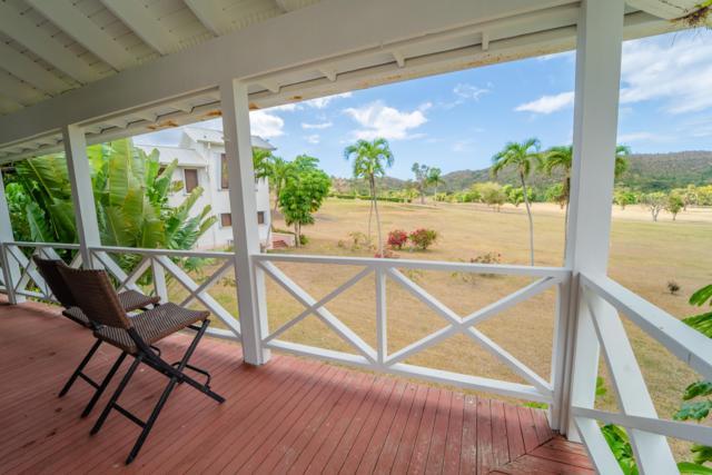 D River Pr, St. Croix, VI 00840 (MLS #19-654) :: Hanley Team | Farchette & Hanley Real Estate