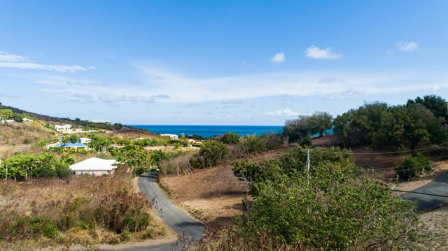 69 Anna's Hope Ea, St. Croix, VI 00820 (MLS #19-687) :: Hanley Team | Farchette & Hanley Real Estate