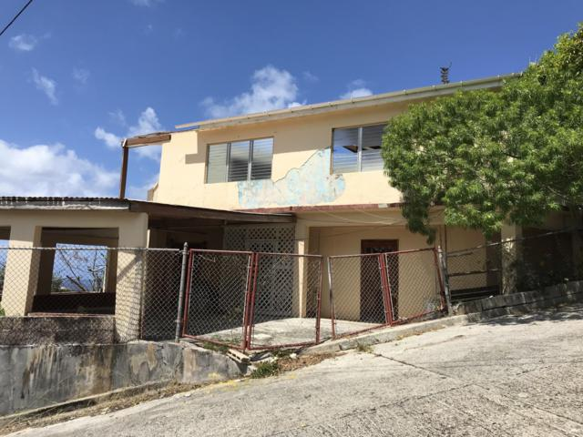 191 Contant Ss, St. Thomas, VI 00802 (MLS #19-703) :: Hanley Team | Farchette & Hanley Real Estate