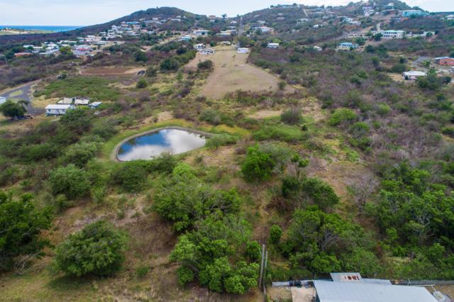 17 Catherine's Rest Co, St. Croix, VI 00820 (MLS #19-706) :: Hanley Team | Farchette & Hanley Real Estate