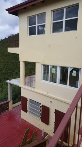 2A Raphune New, St. Thomas, VI 00802 (MLS #19-71) :: Coldwell Banker Stout Realty