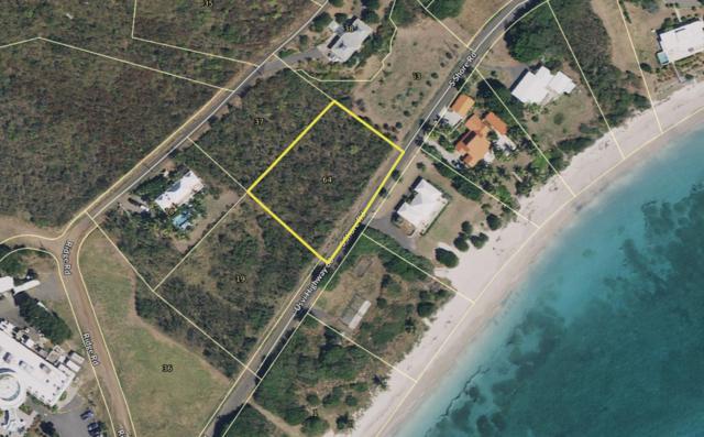 64 South Slob Eb, St. Croix, VI 00820 (MLS #19-734) :: Hanley Team | Farchette & Hanley Real Estate