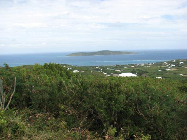 100 Hope & Carton Hill Eb, St. Croix, VI 00820 (MLS #19-764) :: Hanley Team | Farchette & Hanley Real Estate