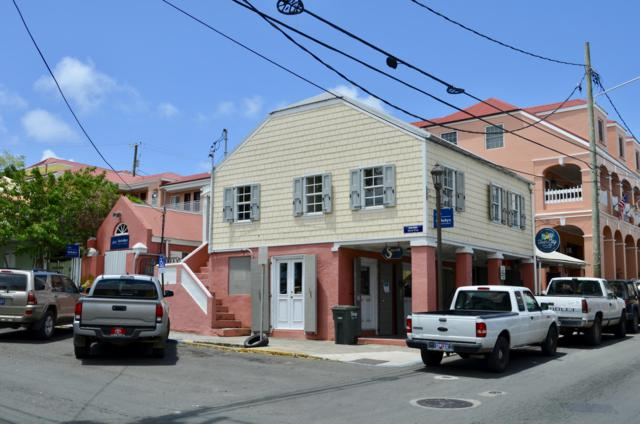 1 Company Street Ch, St. Croix, VI 00820 (MLS #19-768) :: Hanley Team | Farchette & Hanley Real Estate