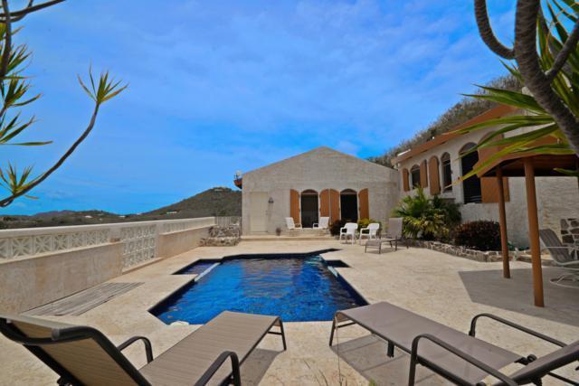 60 Hope & Carton Hill Eb, St. Croix, VI 00820 (MLS #19-809) :: Hanley Team | Farchette & Hanley Real Estate