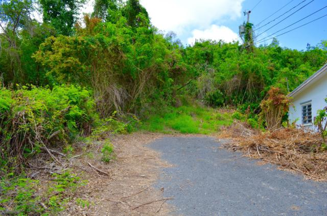 35 Constitution Hill Qu, St. Croix, VI 00820 (MLS #19-818) :: Hanley Team | Farchette & Hanley Real Estate